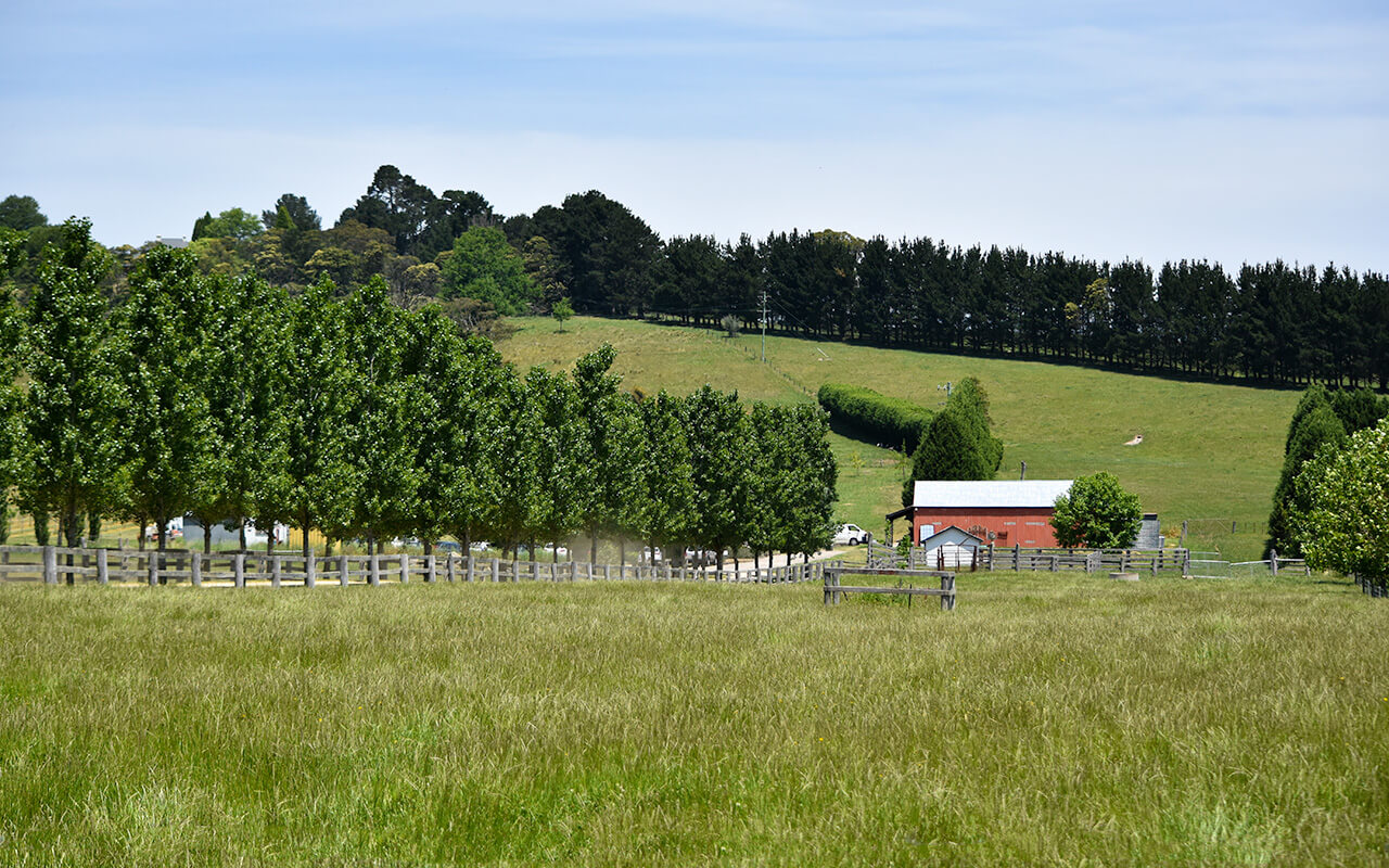 There is beautiful countryside around Berrima Sydney