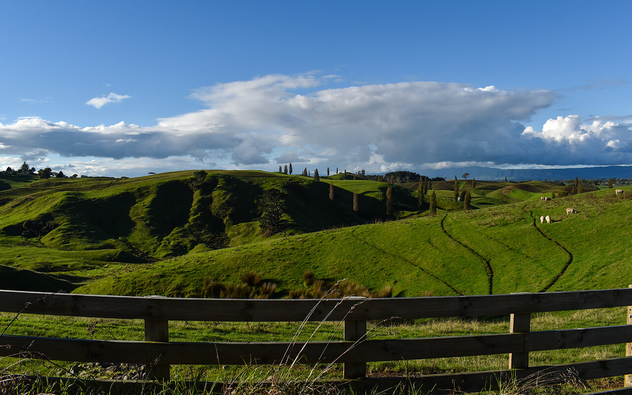 lesterlost-travel-new-zealand-north-island-hobbiton-hills (1)