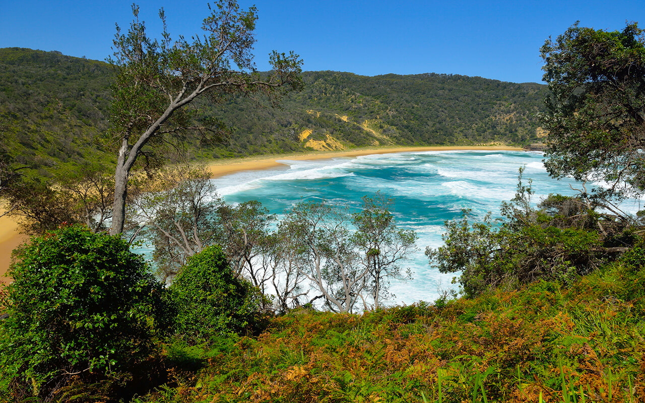 Steamers Beach is a secluded spot to explore on a trip from Sydney to Jervis Bay