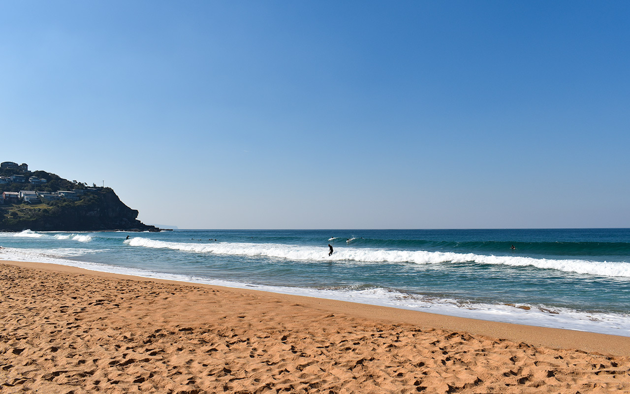 Go to Whale Beach to relax on one of the beautiful Sydney beaches