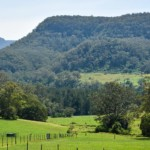 Reasons to take a day trip from Sydney to Berry