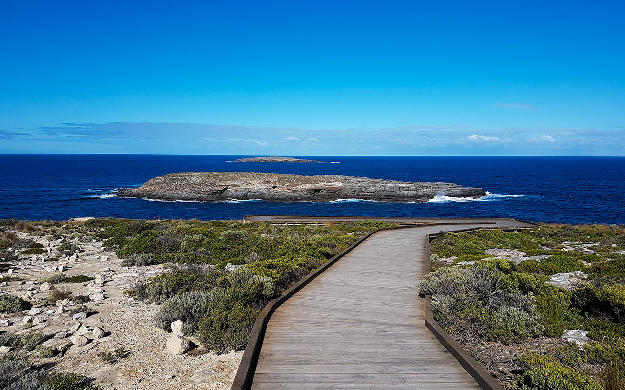 Visiting Cape du Couedic is one of the best things to see in Kangaroo Island