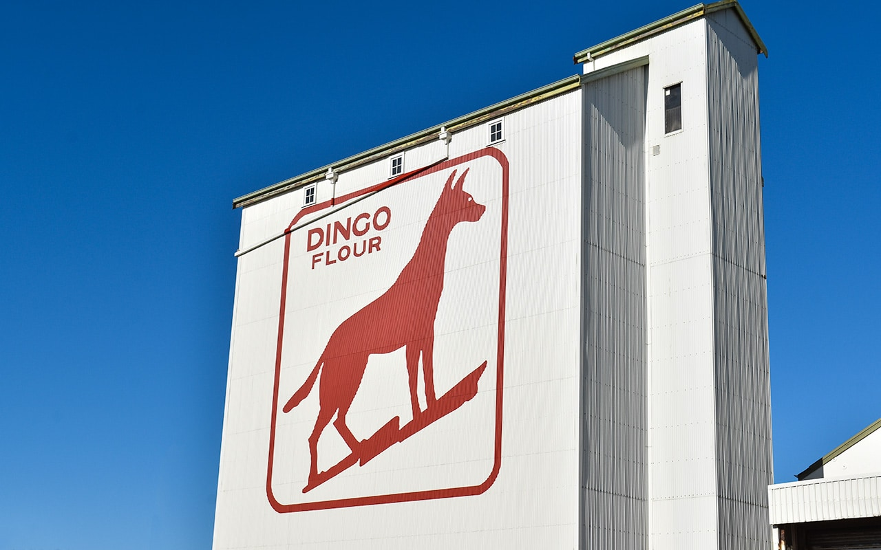 The famous dingo flour mural by Alan Bond