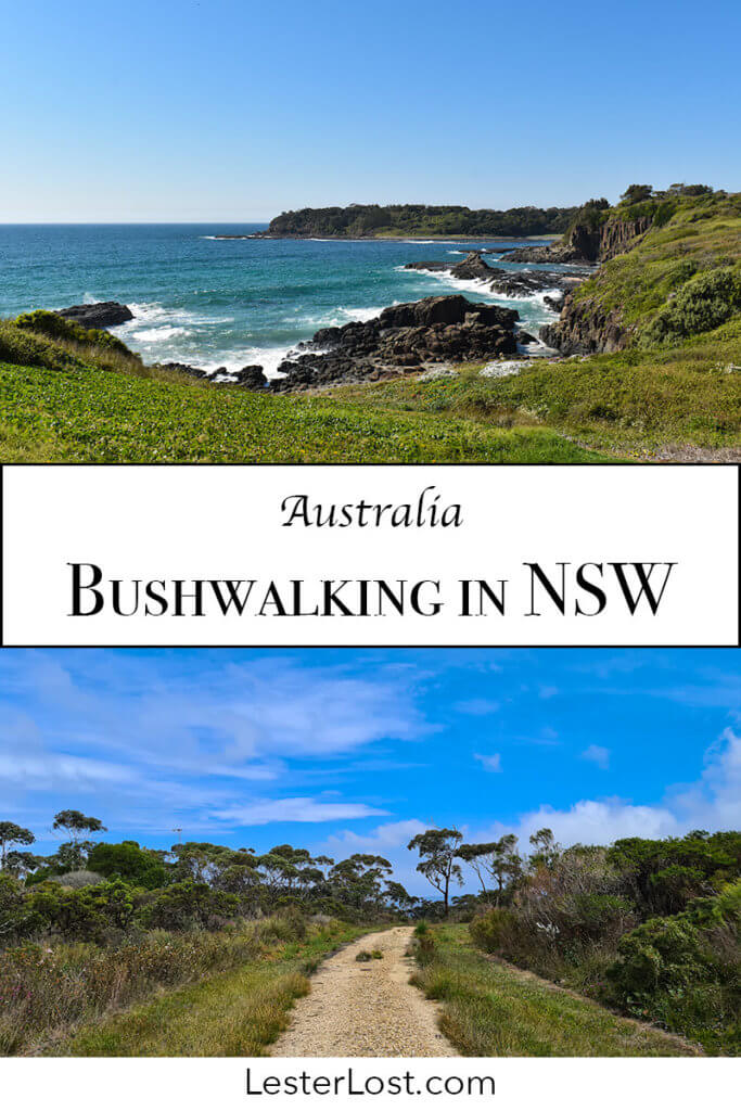 Bushwalking in NSW is a great thing to do in your spare time