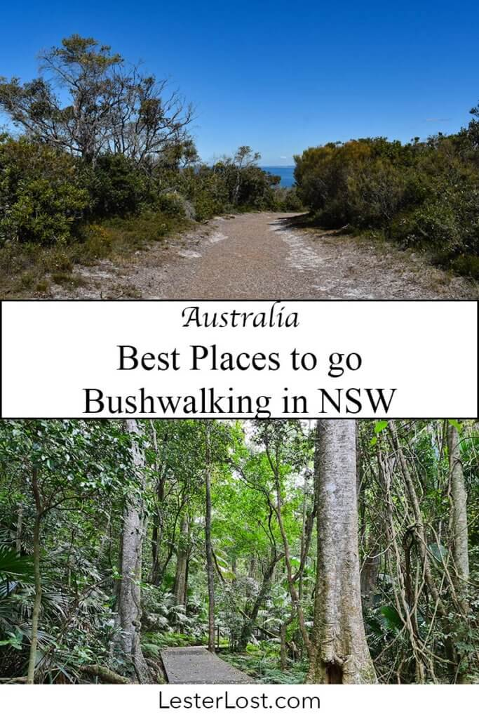This is my list of the best places to go bushwalking in NSW