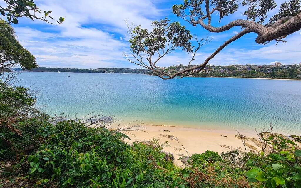 There are some great secret beaches to visit on the Manly to Spit walk